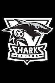 Estampa Camiseta Infantil Sharks