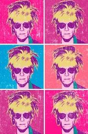 Estampa Camiseta Pop Warhol