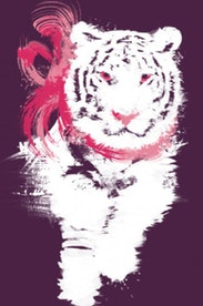 Estampa Camiseta My Little Tiger