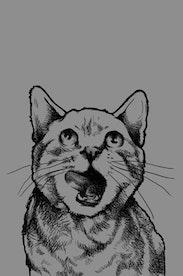 Estampa Camiseta Instinto Felino