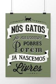 Poster História dos Gatos