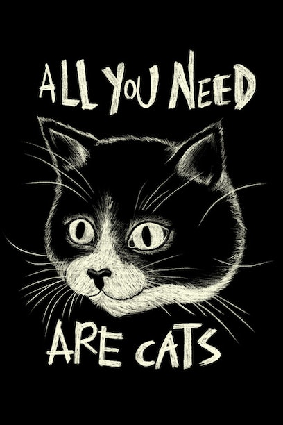 All You Need Are Cats
