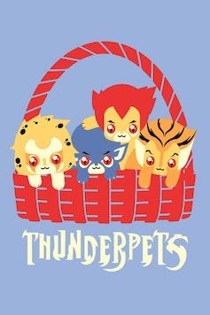 Estampa Camiseta Infantil Thunderpets