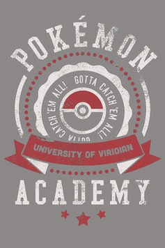 Estampa Camiseta Infantil Pokémon University