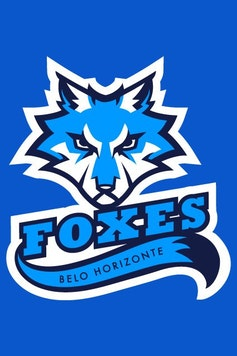 Estampa Camiseta Infantil Foxes