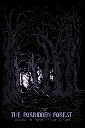 Camiseta Visit Forbidden Forest R$74,90 | 4x de R$18,73
