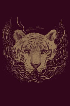 Estampa Camiseta Roar
