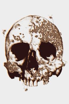 Estampa Camiseta Beehive Skull
