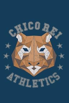 Estampa Camiseta Trend College Tiger