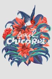 Estampa Camiseta Soul Chico Rei