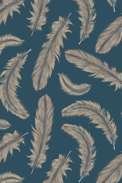 Camiseta Feathers