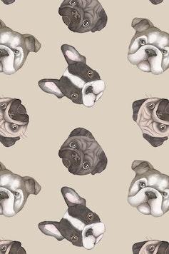Estampa Camiseta Dogs