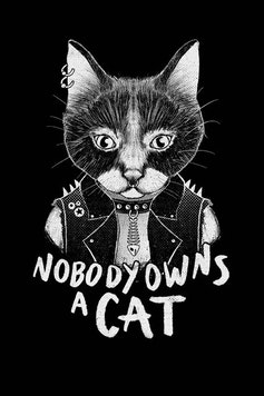Estampa Camiseta Punk Cat