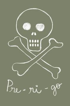 Estampa Camiseta PRE-RI-GO