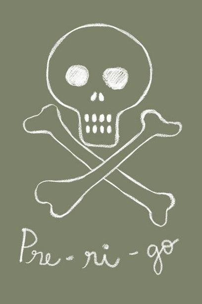 Camiseta PRE-RI-GO