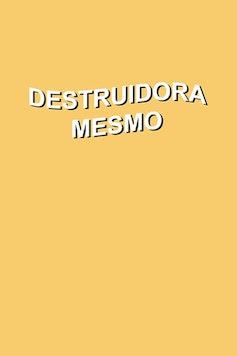 Estampa Camiseta Destruidora