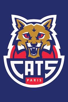 Estampa Camiseta Paris Cats