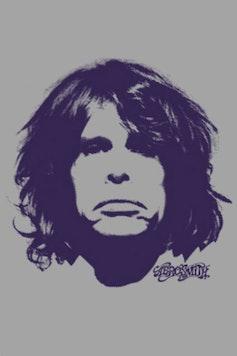 Estampa Camiseta Aerosmith