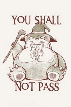 Estampa Camiseta You Shall Not Pass