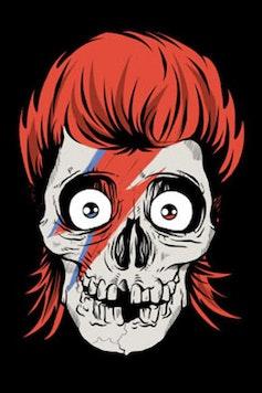 Estampa Camiseta Bowie Skull