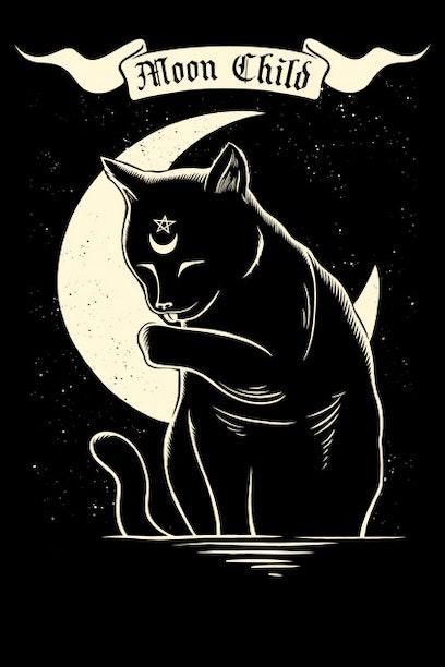 996f3f9e1da5b Camiseta Moon Child - Chico Rei
