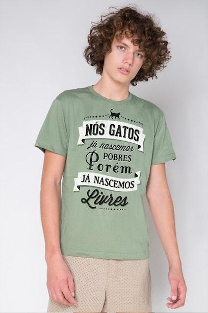 Camiseta História dos Gatos