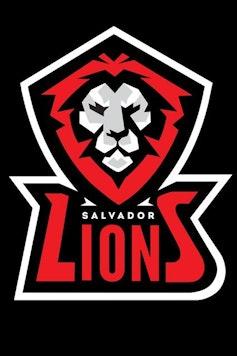 Estampa Capa Outlet Lions