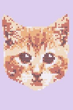 Estampa Manga Longa Little Cat