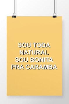 Poster Toda Natural