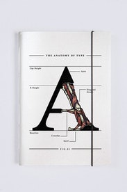 Sketchbook The Anatomy of Type