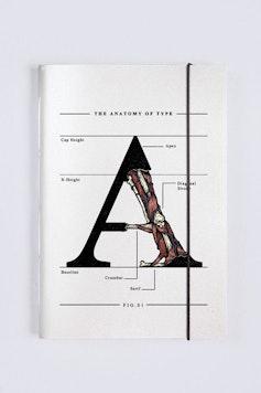 Sketchbook The Anatomy of Type